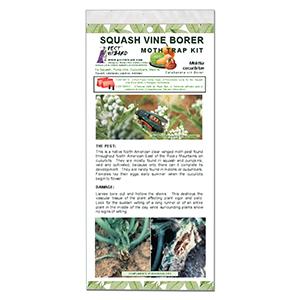 Pest Wizard Squash Vine Borer Trap Kit