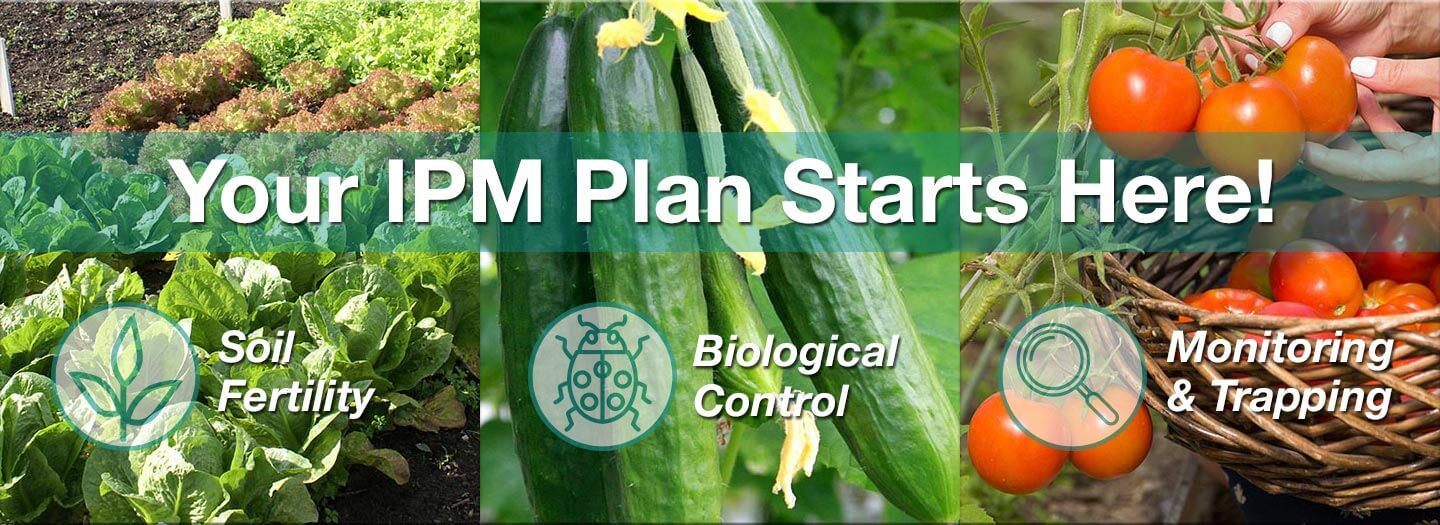 Your IPM Plan Starts Here