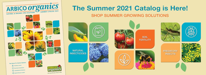 Summer 2021 Catalog