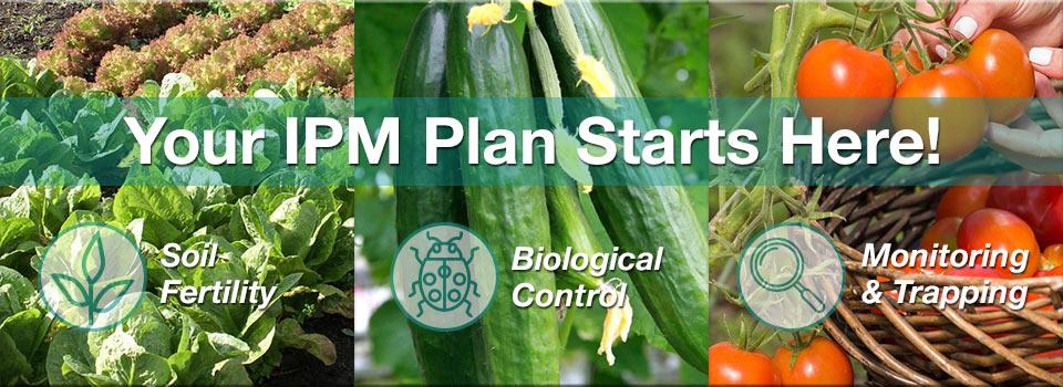 Organic Pest Control - IPM Starts Now
