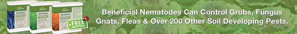 Beneficial Nematodes Broad Spectrum Pest Control