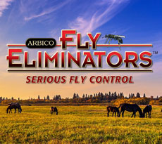 Fly Eliminators - VIP Special