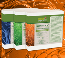 Nematodes for Garden Insect Control