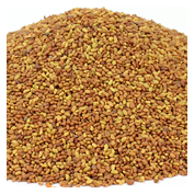 Commercial & Bulk Seeds