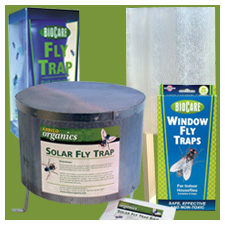 Fly Traps