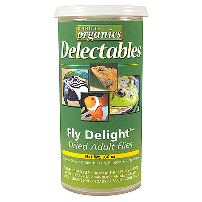 Fly Delight