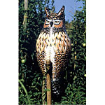 Natural Enemy Scarecrow® Inflatable Owl