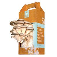 Back to the Roots® Mushroom Farm