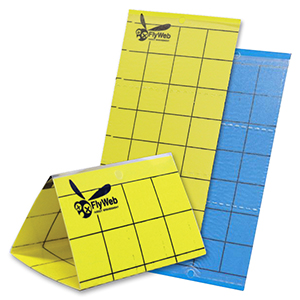 FlyWeb® Insect Monitor Cards - Yellow/Yellow - 10 Pack