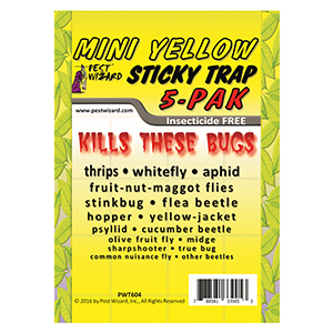 Mini Yellow Sticky Trap - Pack of 5 Traps