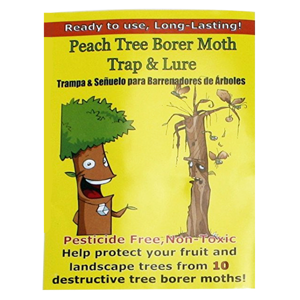 Peach Tree Borer Moth Trap & Lure - 2 Traps/Lures
