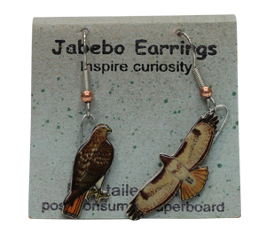 Red-Tailed Hawk Jabebo Earrings
