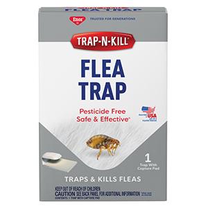 Enoz® Trap-N-Kill® Flea Trap