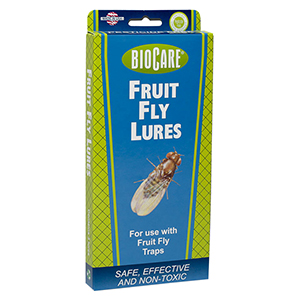 BioCare® Glass Insect Trap