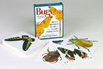 Bugs Knowledge Cards