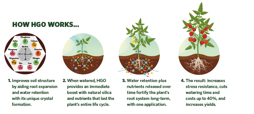 How Harvest Gold Organics Premium Soil Conditioner Works