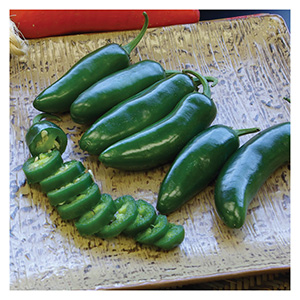 Territorial Seeds - Early Jalapeño Peppers