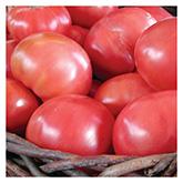 SERO Biodynamic® Seeds - Brandywine Tomato