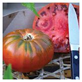 SERO Biodynamic® Seeds - Cosmonaut Volkov Tomato
