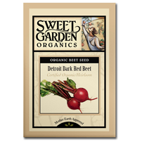 Sweet Garden Organics Seeds - Detroit Dark Red Beet