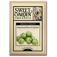 Sweet Garden Organics Seeds - Long Island Brussel Sprouts