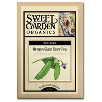 Sweet Garden Organics Seeds - Oregon Giant Snow Pea