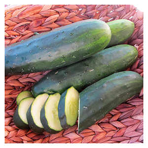 Territorial Seeds - Marketmore Cucumber