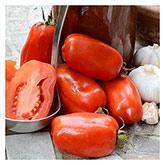 Territorial Seeds - San Marzano Tomato