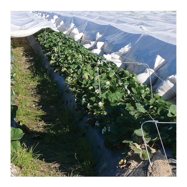 Agribon AG-70 Frost Protection