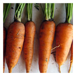NS/S Carrot Seeds - Red Cored Chantenay