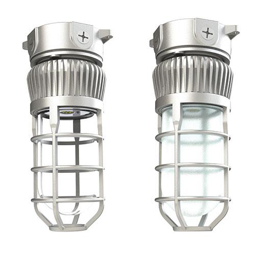 LDPI LEVP Series LED Wet/Damp Light Fixture - Glass Globe w/ Guard