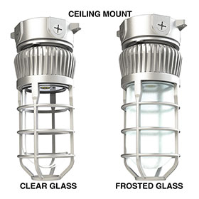 LEVP Ceiling Mount and Bulb Options