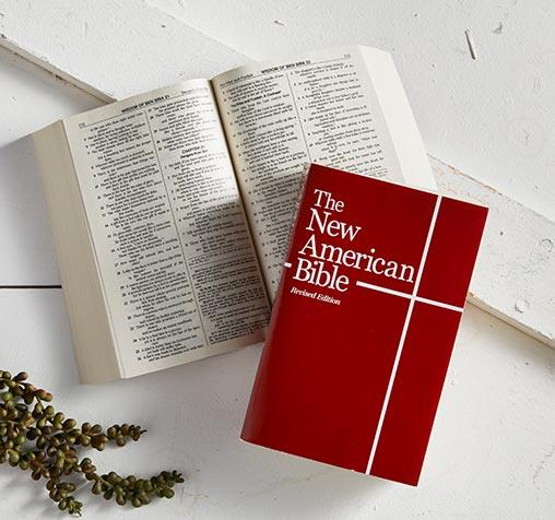 Bibles/Books