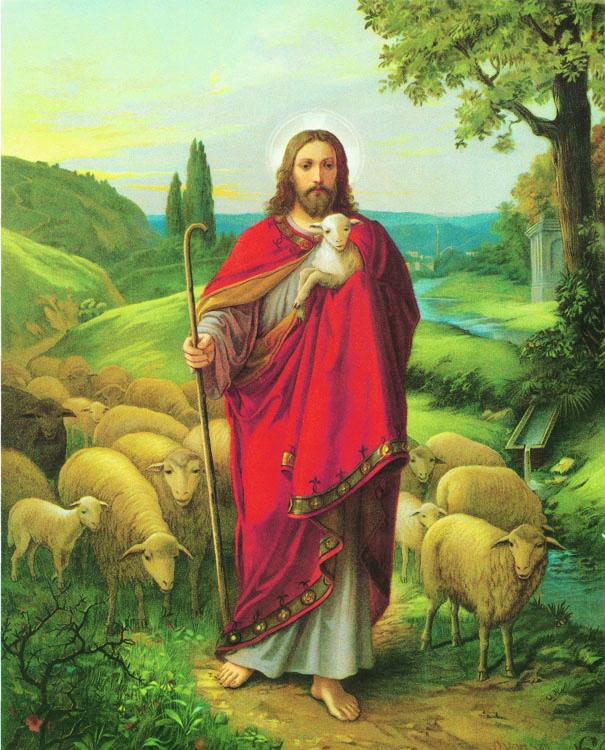 """Voelkel: Good Shepherd 8x10"""" Print"""
