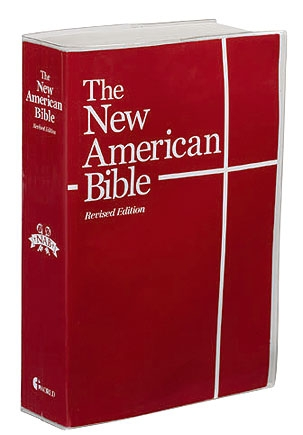 Clear Vinyl Bible Cover - 24/pk