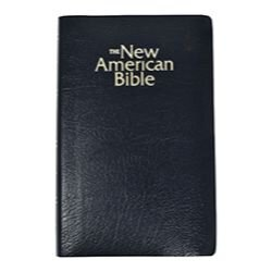 St. Joseph New American Bible (NABRE) Gift & Award Edition-Black