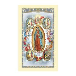 Our Lady of Guadalupe with Visions Laminated Holy Card - 25/pk