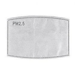 PM2.5 Carbon Filter for Adult Masks - 24/pk