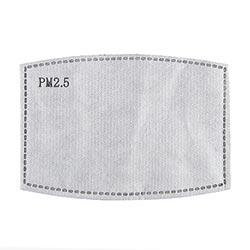 PM2.5 Carbon Filter for Children's Masks - 24/pk