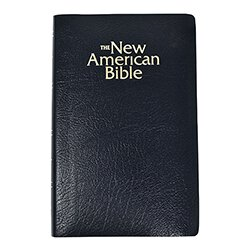 St. Joseph New American Bible -NABRE- Gift & Award Edition-Black