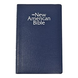 St. Joseph New American Bible NABRE Gift & Award Edition Blue
