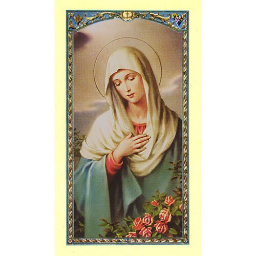 Madonna in Prayer Laminated Holy Card - 25/pk