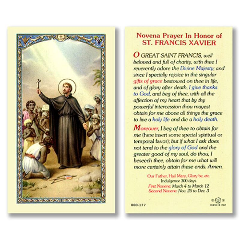 St. Francis Xavier Laminated Holy Card - 25/pk