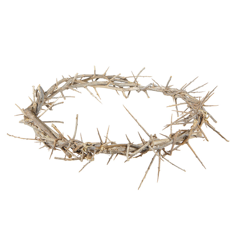 """11"""" Crown of Thorns"""