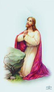 Christ Garden Blank Back Holy Card