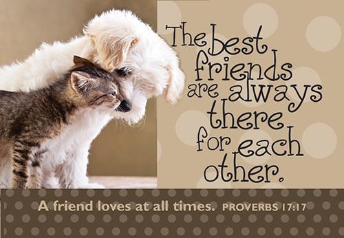 Pass It On: The Best Friend