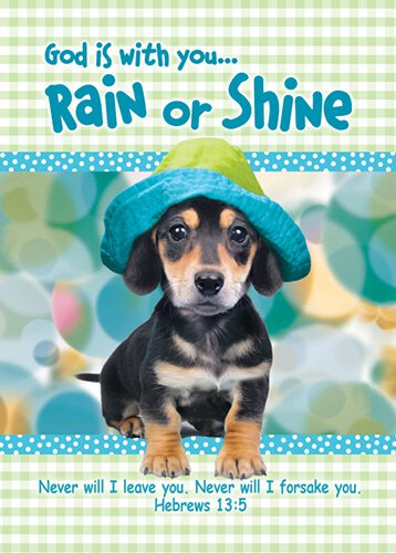 Verse Cards Rain or Shine