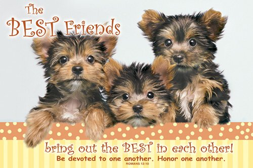 Small Poster The Best Friends