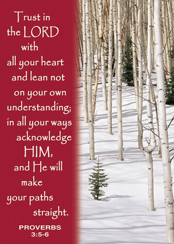 Verse Cards Trust In The Lord