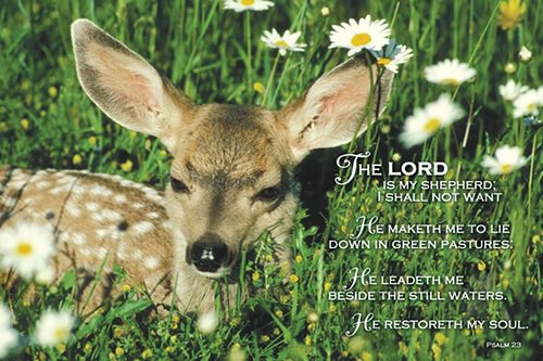Small Poster Psalm 23